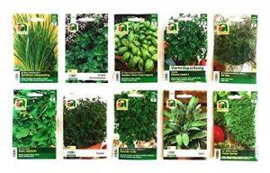10 variétés | Assortiment de graines à base de plantes | plus de 60000 graines à base de plantes | Pack Advantage | à partir de maintenant le prix de promotion de l'hiver de la marque Austrosaat image 0 produit