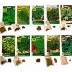 10 variétés | Assortiment de graines à base de plantes | plus de 60000 graines à base de plantes | Pack Advantage | à partir de maintenant le prix de promotion de l'hiver de la marque Austrosaat image 1 produit