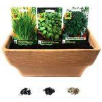 10 variétés | Assortiment de graines à base de plantes | plus de 60000 graines à base de plantes | Pack Advantage | à partir de maintenant le prix de promotion de l'hiver de la marque Austrosaat image 3 produit