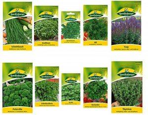 10 variétés | Assortiment de graines d'herbes | adapté aux débutants | maintenant prix spécial d'hiver de la marque Quedlinburger image 0 produit