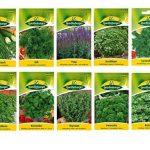 10 variétés | Assortiment de graines d'herbes | adapté aux débutants | maintenant prix spécial d'hiver de la marque Quedlinburger image 1 produit