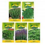 10 variétés | Assortiment de graines d'herbes | adapté aux débutants | maintenant prix spécial d'hiver de la marque Quedlinburger image 2 produit