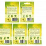 10 variétés | Assortiment de graines d'herbes | adapté aux débutants | maintenant prix spécial d'hiver de la marque Quedlinburger image 4 produit