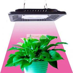 100W Full Spectrum Led élèvent la lumière pour les plantes graines de fleurs Veg croissance intérieure lampes à effet de serre Grow Led lumière hydroponique de la marque Lumière de la plante image 0 produit