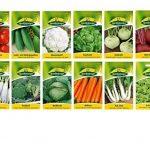 12 variétés   Assortiment de graines de légumes   adapté aux débutants   mélange robuste   maintenant prix spécial d'hiver de la marque Quedlinburger image 1 produit