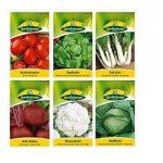 12 variétés   Assortiment de graines de légumes   adapté aux débutants   mélange robuste   maintenant prix spécial d'hiver de la marque Quedlinburger image 2 produit