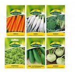 12 variétés   Assortiment de graines de légumes   adapté aux débutants   mélange robuste   maintenant prix spécial d'hiver de la marque Quedlinburger image 3 produit