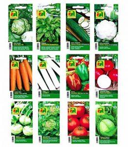12 variétés   Assortiment de graines de légumes   plus de 14000 graines   ensemble de départ complet   mélange robuste   Il suffit de tirer vos propres légumes à la maison avec nos semences de qualité de la marque image 0 produit
