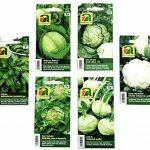 12 variétés | Assortiment de graines de légumes | plus de 14000 graines | ensemble de départ complet | mélange robuste | Il suffit de tirer vos propres légumes à la maison avec nos semences de qualité de la marque Austrosaat image 2 produit