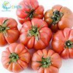 200pc grosses graines de tomates Zapotec ébouriffé, des graines de variétés anciennes rares mexicaines, saveur sucrée, tranches festonnés, la sécheresse de la marque SVI image 2 produit