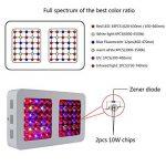 300W / 600W Double Chips LED élèvent la lumière plein Spectre élèvent l'usine de lampe élèvent des lumières avec la chaîne de cintre de corde Daisy pour les plantes hydroponiques de serre d'intérieur se développant ( puissance : 600W ) de la marque Lumièr image 4 produit