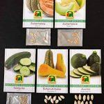 5 variétés | Assortiment de graines de légumes | Édition Gourmet | Set de concombre courge butternut Zuchini sucre melon 'Galia' sucre melon 'Bari' | pour la culture dans le lit de jardin et le balcon de la marque Austrosaat image 2 produit