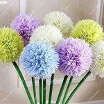 50pcs / sac exotique graines d'oignon géant Allium Pas Bulbes arc-Bonsai Fleurs de jardin en pot plante facile à cultiver de la marque SVI image 1 produit