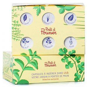 6 Capsules pour Lilo de Prêt à Pousser : 6 Herbes Aromatiques (basilic, persil, menthe, coriandre, ciboulette et thym) de la marque Prêt à Pousser image 0 produit