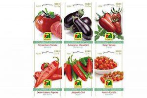 6 variétés | Assortiment de graines de légumes | Édition Gourmet | Set pour l'aubergine Italiano-Paprika Jalapeno-Chili Salade de bœuf-coeur-tomate-tomate Nasch-tomate | pour la culture dans le lit de jardin et le balcon de la marque Austrosaat image 0 produit