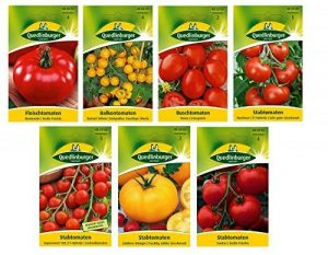 7 Variétés   Assortiment de Graines de Tomate de la marque Quedlinburger image 0 produit