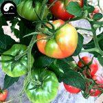 acheter plants légumes TOP 2 image 1 produit
