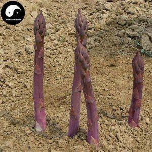 acheter plants légumes TOP 4 image 0 produit