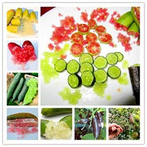 acheter plants légumes TOP 9 image 0 produit