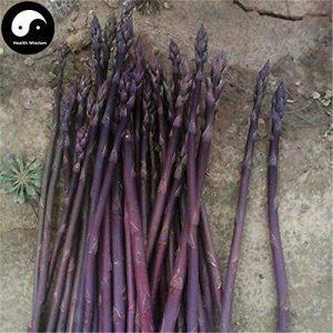 Acheter Violet Asperges Graines de légumes de bourgeons végétaux Légumes Asparagus officinalis de la marque SVI image 0 produit
