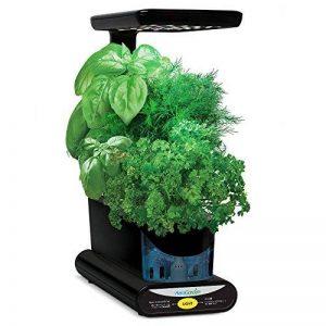 AeroGarden Miracle-Gro Sprout LED avec kit de capsules de graines d'herbes gourmets (noir) de la marque AeroGarden image 0 produit