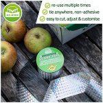 arbre fruitier à acheter TOP 4 image 3 produit