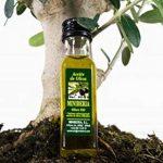 arbre olivier TOP 4 image 3 produit
