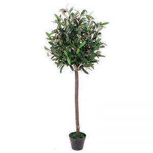 arbre olivier TOP 6 image 0 produit