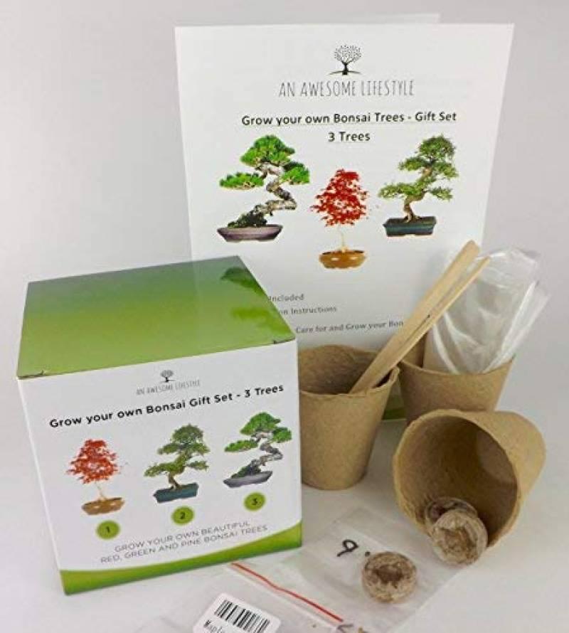 Bonsai-Shopping 62015 Terre /à bonsa/ïs Terreau pour toutes vari/ét/és de pins 2 l