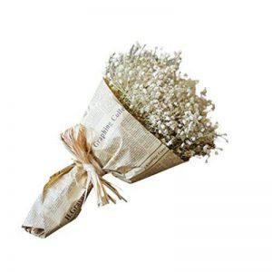 bouquet de fleur cadeau TOP 8 image 0 produit