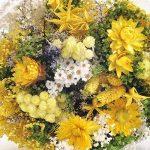 Bouquet-Fantasy- Sanremo fleurs séchées de la Riviera dei Fiori .Italie (Jaune) de la marque LA SEMPREVIVA image 2 produit