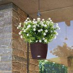 bouquet pas cher TOP 9 image 2 produit