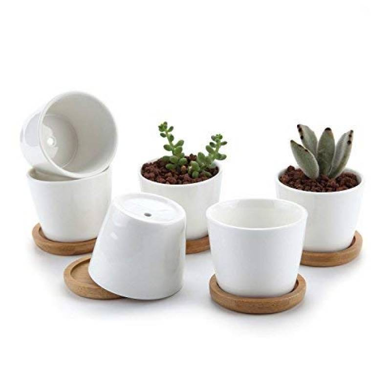 2x Hibou Céramique succulente Cactus plante Pot Set Bambou Plateau Set de mariage 2 T4U