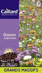 Caillard PFCD21540 Graines de Gazon Japonais 15 m² de la marque Caillard image 0 produit