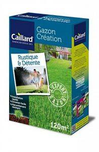 Caillard PFSB19776 Graines de Gazon Rustique et Détente 3 kg 120 m² de la marque Caillard image 0 produit
