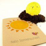 'Carte de vœux Motif soleil–Joyeux printemps Carte à planter (Fleurs sauvages) de la marque DieStadtgaertner image 4 produit