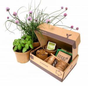 coffret herbes aromatiques TOP 2 image 0 produit