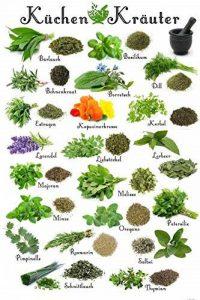 Cuisine Papier Peint Photo/Poster Autocollant - Herbes Aromatiques (180 x 120 cm) de la marque 1art1® image 0 produit