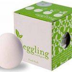 Eggling herbe aromatique - Menthe de la marque HCM Kinzel image 2 produit