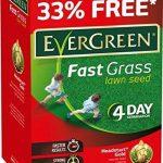 EverGreen rapide Herbe de gazon 15m2Pluss 33% supplémentaire gratuit 4Jour germination 600g de la marque Evergreen image 1 produit