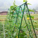 Everpert en nylon durable Treillis Net Filet de jardin support pour plantes pour plantes grimpantes de la marque Everpert image 1 produit