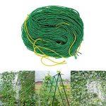 Everpert en nylon durable Treillis Net Filet de jardin support pour plantes pour plantes grimpantes de la marque Everpert image 4 produit