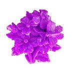 EVRYLON ➣ Moule en Silicone à Usage Artisanal avec la Forme D'un Bouquet de Fleurs et Un Papillon de la marque EVRYLON image 3 produit