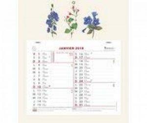 Exacompta 33315E Calendrier Mensuel Fleurs 30,5 x 27,5 cm Année 2018 - Coloris Aléatoire de la marque Exacompta image 0 produit
