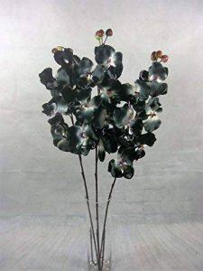Fleurs artificielles orchidée 75cm prêt pour un vase Lot de 3tiges (Noir) de la marque Link image 0 produit