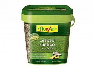 Flower 10706–semis gazon rustique, 2kg de la marque Flower image 0 produit