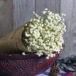 FNKDOR Gypsophila naturel séché fleur bébé souffle Home Decor Sky Star-cadeau paquet (blanc) de la marque FNKDOR image 1 produit