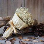 FNKDOR Gypsophila naturel séché fleur bébé souffle Home Decor Sky Star-cadeau paquet (blanc) de la marque FNKDOR image 4 produit
