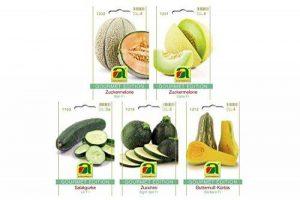 graines bio pour potager TOP 10 image 0 produit