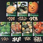graines bio pour potager TOP 11 image 2 produit